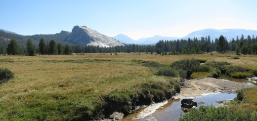 Lembert Dome across Tuolumne Meadow north of Tioga Hwy.