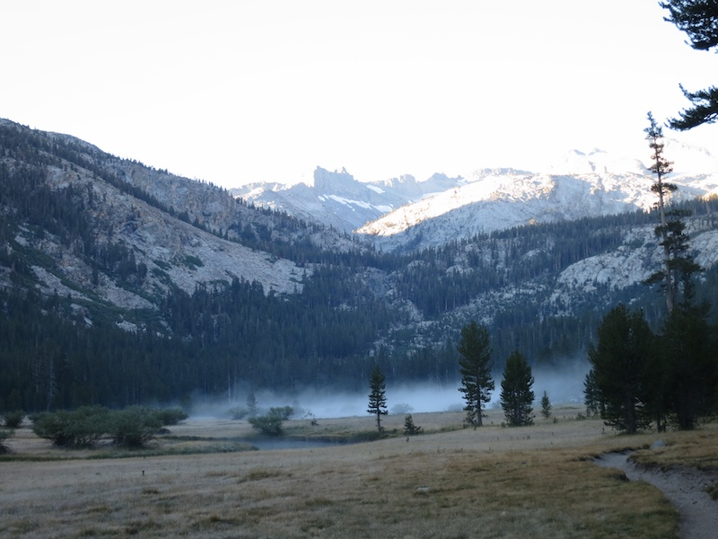 Early morning mist rising off the river in Lyell Canyon.