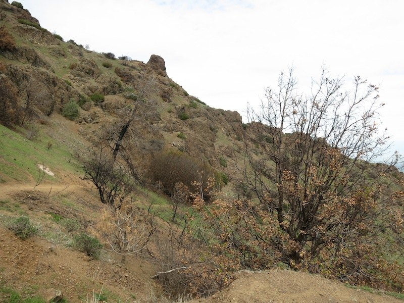 The North Peak Trail from the trailhead. #morganfire04