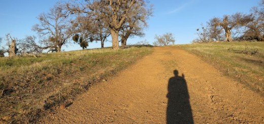 Alice's shadow on the Ohlone Wilderness Trail at dusk