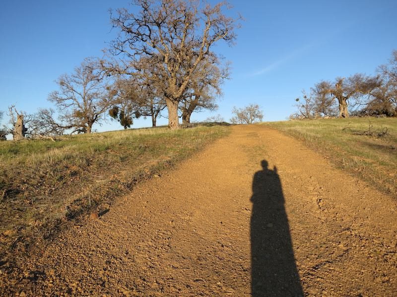 Alice's shadow on the Ohlone Wilderness Trail