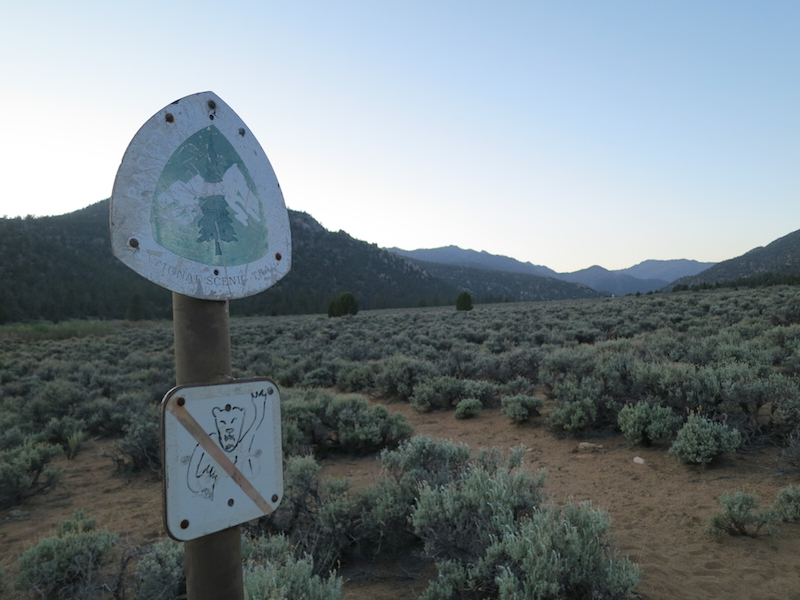 "pct trail marker with ""no bears"" image drawn below"